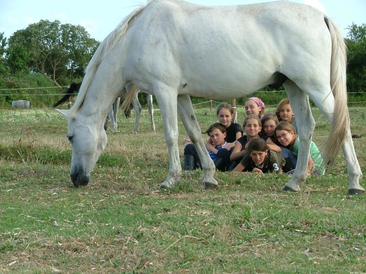 Séjour Équitation Initiation