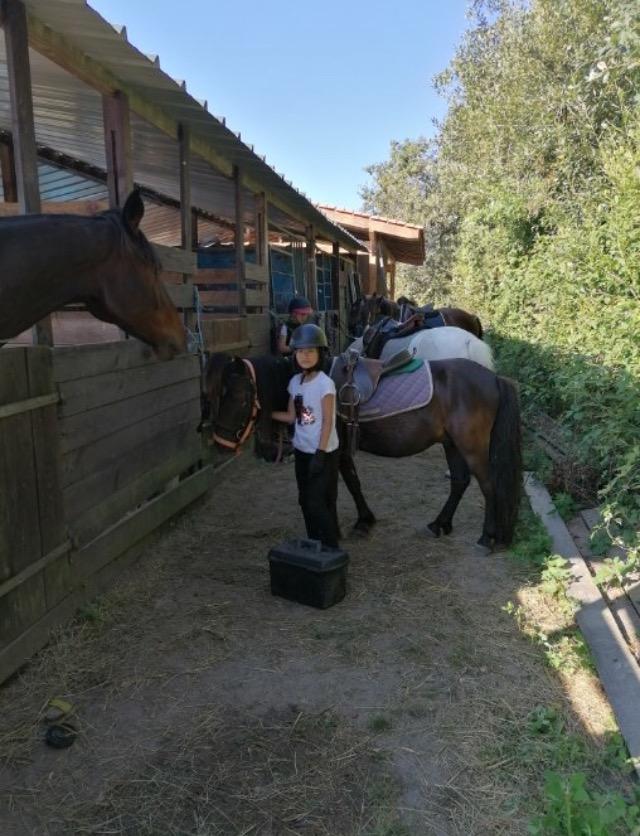 Séjour Équitation Perfectionnement