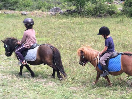 Équitation dans la Haute-Vienne