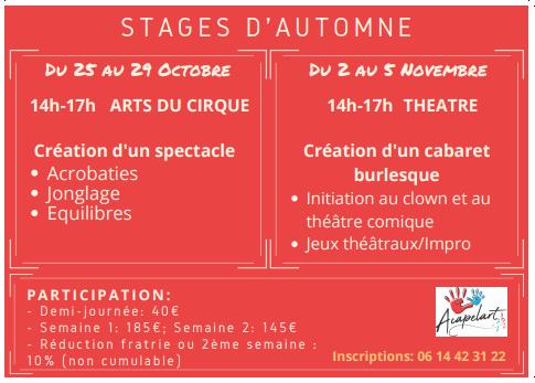 Stage de Cirque