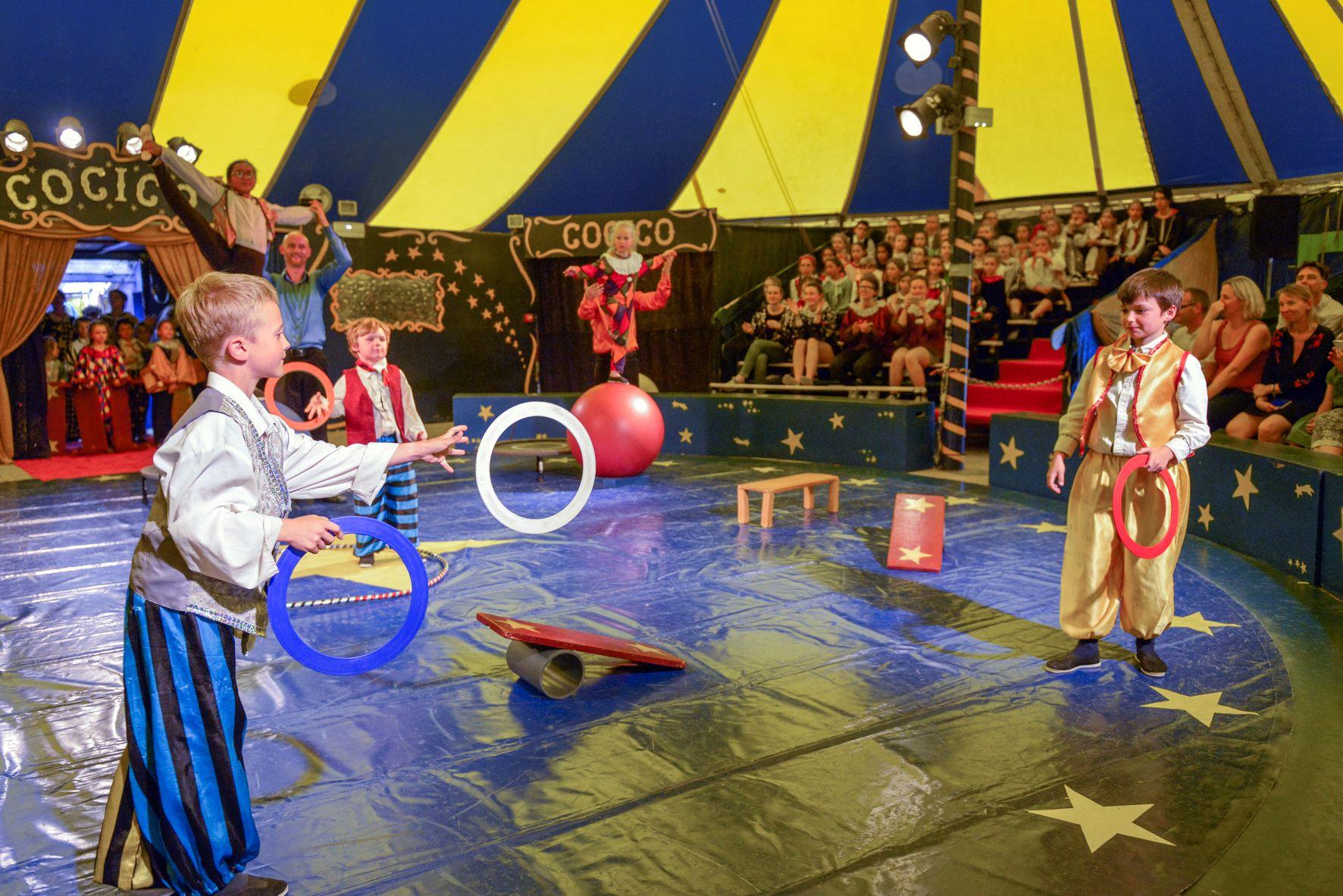 Cirque & équitation